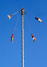 Flying (bird)men descend to earth in the ancient 'Voladores' ceremony, Papantla