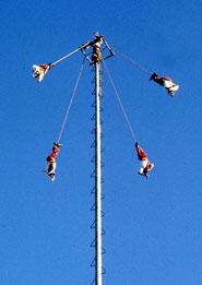 Flying (bird)men descend to earth in the ancient 'Voladores' ceremony, Papantla