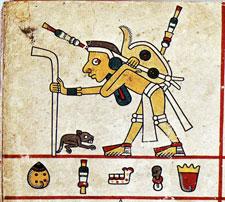 Pochteca merchant, Codex Fejervary Mayer, detail
