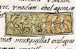 Pic 3: 'Catching the Axaxayacatl', Florentine Codex Book 11
