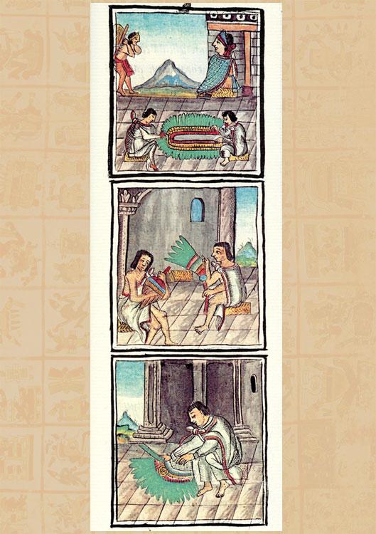 florentine codex book 12 pdf