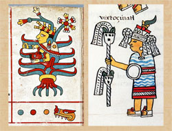 Pic 12: (left) Mayahuel, the goddess of the maguey and pulque emerges from a maguey plant, Codex  Fejérváry-Mayer, p. 28; (right) Huixtocihuatl, the goddess of salt, Primeros Memoriales folio 264r