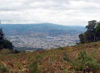 Pic 10: Jalapa