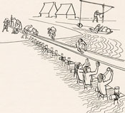Pic 8: Artist's impression of building a causeway near Tenochtitlan; illustration by Alberto Beltrán