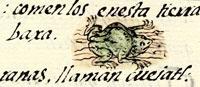 Pic 8: Frog, Florentine Codex Book XI