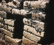 Pic 2: Close up of the baked bricks and bitumen mortar of the ziggurat at Ur
