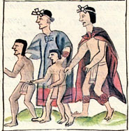 Pic 13: Aztec family celebrating the feast of  'The Eating of Tamales Stuffed with Amaranth Greens', Florentine Codex, Book 2