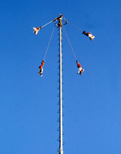 The 'Voladores' ('flyers') ceremony: can you spot the musician at the top?!