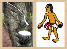 Pic 16: Gathering 'hule' (rubber) (L); ballgame player - illustration by Miguel Covarrubias based on the Codex Maglabecchiano