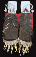 Pic 16: Hopi woman's dance wands. These are used in a ceremony during that  portion of the year when the 'katsinam' are not present. Photograph by Jonathan E.  Reyman