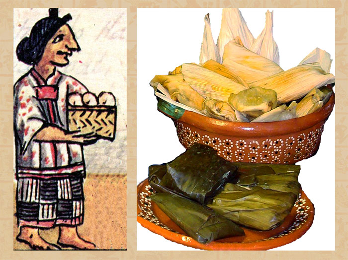 Image gallery mayan food and crops for Ancient mayan cuisine