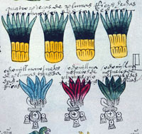 Pic 3: Codex Mendoza, detail of page 46r showing four bundles of 'quetzalli'