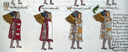 Pic 13: Quetzallalpiloni detail, Codex Mendoza folio 65r