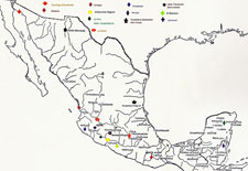 Pic 6: Map of copper sites in pre-Hispanic Mexico