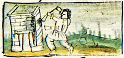 Pic 2: An Aztec thief; Florentine Codex, Book 10