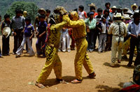 Pic 17: Two jaguar-men fighting during an early May festival to petition for rain at the village of Acatlan, Guerrero. (These fights take place on top of a local mountain, and are violent fist-fights between young men and blood is spilt)