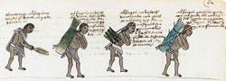 Pic 7:  Students of the Calmecac performing daily chores. Codex Mendoza, fol.62r (detail)