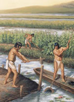 Pic 16: Working the Chinampas fields in Aztec times
