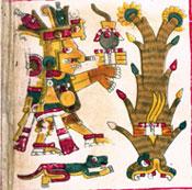 Pic 5: Centéotl; detail from the Codex Borgia pl. 14