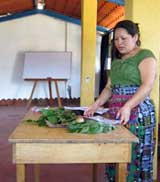 Pic 4: An indigenous Maya woman