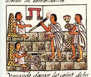 Pic 4: Tobacco tube and sunflower: gifts for nobles with military associations... Florentine Codex Book 9