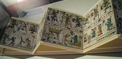 Pic 2: The Codex Fejérváry-Mayer exhibited in the gallery of the World Museum of Liverpool (currently Liverpool National Museum) in 2008