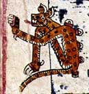Pic 13: Jaguar with a succession of stars on his back. Codex Vaticanus B, plate 87 (detail)