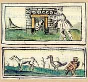 Pic 14: 'The possessed one' (top), 'One who turns himself into a dog, etc.'; Florentine Codex Book X