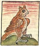 Pic 18: The horned owl as omen of death, Florentine Codex Book V