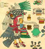 Pic 19: Chalchiuhtotallin (precious turkey), the theophanic form of Tezcatlipoca. Codex Borbonicus, p. 17