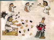 Fig 3: Sacerdotisa lanza el maíz. Códice Tudela
