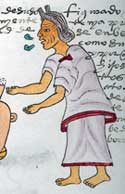 Pic 9: 'I am the strength of the grandmother...' Codex Mendoza fol. 71r (detail)