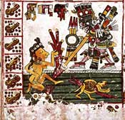 Pic 2: Tlahuizcalpantecuhtli (the Venus star) from the Codex Borgia