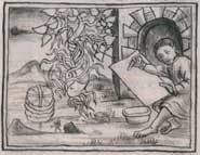 Pic 2: Drawing of Zactlaxcalli, one of the ingredients of yellow paint in the Florentine Codex