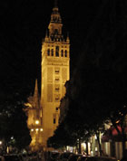 Pic 6: Seville cathedral at night