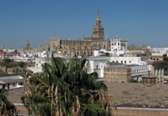 Pic 7: View of Seville from the cathedral tower