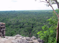 Pic 9: The Yucatán landscape from temple top, Cobá