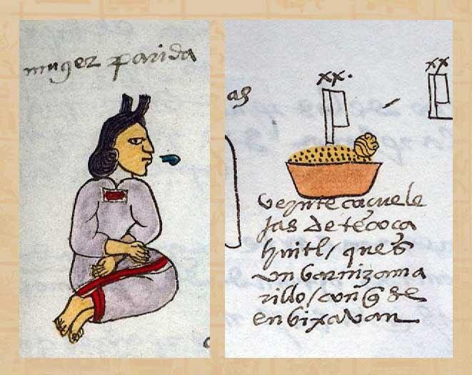 Codex Corner Colours Used In Aztec Books