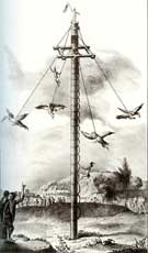 Pic 8: The representation of the Voladores in Clavijero's 'Historia...'
