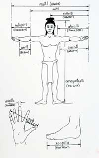 Pic 2: Aztec body measurements