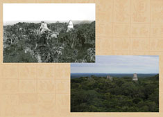 Maudslay's photograph taken from Temple IV at Tikal, alongside the same view today