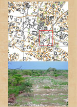 Pic 7: One of the oldest markets identified to date in the Maya area, at Chunchucmil, Mexico, where Bruce Dahlin and colleagues found an Early Classic (C.E. 250-600) market (top). What the marketplace area at Chunchucmil looks like today (bottom)