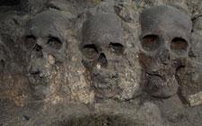 Fig 8:  Cráneos de la torre adosada a la porción norte de la plataforma del Huei Tzompantli. Corresponde a la fachada exterior de dicha torre y estaban aglutinados con argamasa de cal, arena y arcilla