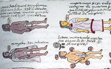 Pic 5: Youths executed for drunkenness, Codex Mendoza, folio 71r