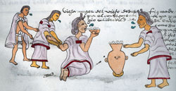 Pic 6: Old woman drinking pulque, Codex Mendoza, folio 71r