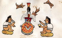 Foaming pulque container, Codex Tudela (fol. 70r, detail)