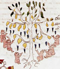 Pic 2: Infants who died at an early age being fed by a tree; Codex Vaticanus 3738 fol. 3v., detail