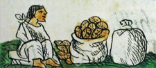 Pic 10: Cacao seller, Florentine Codex