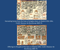 Pic 3 (top): extracting honey, Codex Madrid; (bottom): making offerings, Codex Madrid