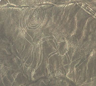 Pic 4: The 'Monkey Labyrinth', measuring just over 80 yards (73m) long, from the series of geoglyphs, the Nazca Lines in Peru